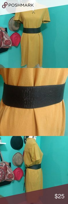 """Indian Outfit Dress with belt! Halloween costume Size 10 Liz Claiborne dress is brand new! Belt is used and has some slight wear but could be waxed.  This is a Eileen Fisher belt. Very nice fall orange. Black belt 37"""" from shoulder to hem. Liz Claiborne Dresses Midi"""