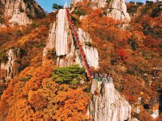 Daedunsan Mountain Suspension Bridge – South Korea This bridge is part of Daedunsan Provincial Park which is defined by grandiose rock peaks of different summits and lush trees that fill the area. Autumn In Korea, Scary Bridges, Color Television, Jeju Island, Hidden Beach, Suspension Bridge, Take Better Photos, Life Pictures, Fall Photos