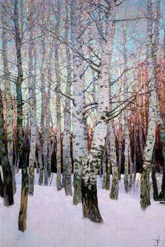 SILVER BIRCHES IN WINTER by Bill Storey A superb oil painting of silver Birch trees in the snow of early winter a true artist who can paint white of new snow and the silver tones incurred of the tree bark very clever and tallented Winter Landscape, Landscape Art, Landscape Paintings, Landscape Sketch, Paintings Of Trees, Birch Trees Painting, Painting Clouds, Christmas Landscape, All Nature