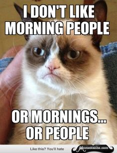 This grumpy cat meme is growing on me, ha. And I agree, here. ;)