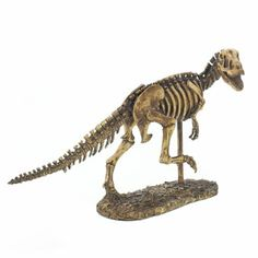 Put some bite into your decor with this detailed T-Rex skeleton statue that's a perfect fit for your desk or bookshelf. This scaled-down T-Rex is on the run and is sure to delight dinosaur fans and ad