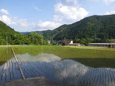 田園風景/奈良県吉野町
