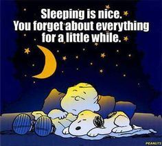 Love spooning with Thomas ( our furry kid ) on the edge of our bed ,purring in a… Good Night Quotes, Great Quotes, Funny Quotes, Inspirational Quotes, Dope Quotes, Peanuts Gang, Charlie Brown And Snoopy, Snoopy Love, Snoopy And Woodstock