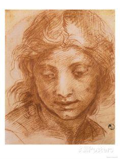 Testa di donna giovane, Disegno di Andrea Del Sarto, Galleria degli Uffizi, Firenze Stampa giclée