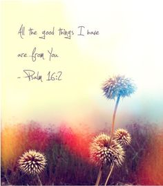 Psalm 16:2 ~ All the good things I have are from You! Follow us at http://gplus.to/iBibleverses