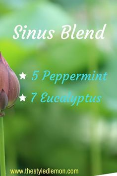 My favorite essential oil diffuser blends. sinus headache, stuffiness, cold, sinuses. peppermint and eucalyptus blend