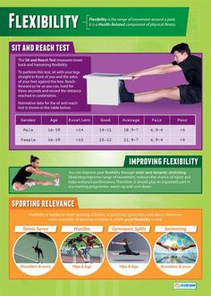 Best Physical Education Posters Images  Education Posters  Flexibility Physical Education Fitness Chart In High Gloss Paper  X   Ships  Days  Read More At The Image Link Essays For High School Students also Sample Proposal Essay  Compare Contrast Essay Examples High School