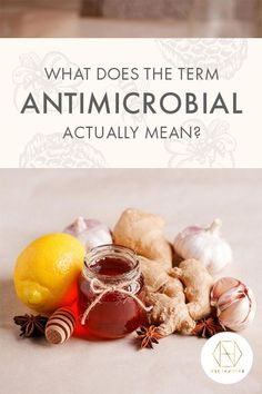 You might wonder what antimicrobial honey is - we certainly talk about it a lot at Necta Sugar Content In Fruit, Australian Honey, Bee Free, Best Honey, Types Of Fruit, Cell Wall, Microorganisms, Alternative Treatments, Sugar Cravings