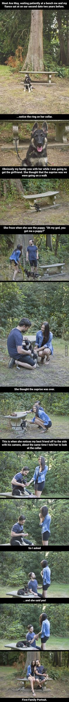 Omg. I just died. A puppy AND an engagement ring. Yes.