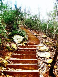 Crowder's Mountain - NC. Going hiking here with my man this weekend! So excited :):)