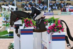 Equestrian Equipments Tips King Horse, Horse Girl, Equestrian Chic, Equestrian Outfits, American Pharoah, English Riding, Hunter Jumper, Show Jumping, Show Horses