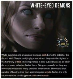 Scary Creepy Stories, Creepy Facts, Fun Facts, Scary Myths, Creepy Stuff, Paranormal Stories, Horror Stories, Demon Stories, Ghost Stories