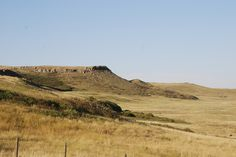 buffalo jump (and tourist attraction) - the natives used to chaise herds of bison off these cliffs Alberta Canada, Bison, Monument Valley, Buffalo, Attraction, Water Buffalo