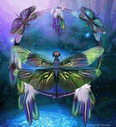 Shop for dragonfly dream catcher artwork and designs from the world's greatest living artists. All dragonfly dream catcher artwork ships within 48 hours and includes a money-back guarantee. Dragonfly Art, Dragonfly Tattoo, Dragonfly Quotes, Dragonfly Jewelry, Dragonfly Painting, Dragonfly Clothing, Dragonfly Wallpaper, Animal Spirit Guides, Spirit Animal