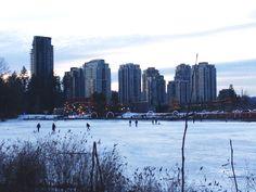 Frozen Lafarge Lake Tri Cities, New York Skyline, Frozen, City, Travel, Voyage, Viajes, Traveling, Trips