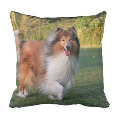 Rough Collie dog photo beautiful cushion pillow