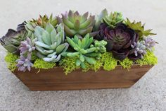 Artificial Succulent in a Rectangle Wood Box. $40.00, via Etsy.