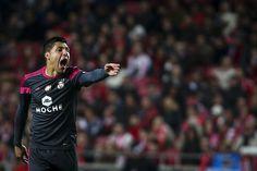 Enzo Pérez, SL Benfica