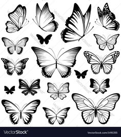 Butterfly Tattoo Silhouettes Clip Art Decoradas Tattoos - Clip Art Of Butterfly Tattoo Silhouettes Search Clipart Illustration Posters Drawings And Eps Vector Graphics Images Tatuagem Preta Tatuagem De Lotus Inspiracao Para Tatuagem Tatuagem No Tornoz Butterfly Sketch, Butterfly Outline, Butterfly Tattoo Meaning, Butterfly Stencil, Butterfly Tattoo Designs, Butterfly Design, White Butterfly, Monarch Butterfly, Simple Butterfly Tattoo