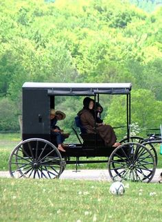 Open Amish Buggy