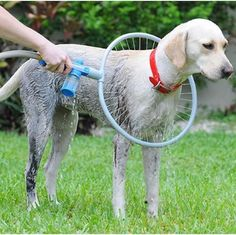 You just have to add Woof Washer 360 to your hose, add shampoo, slip the hoop over your dog and turn on.
