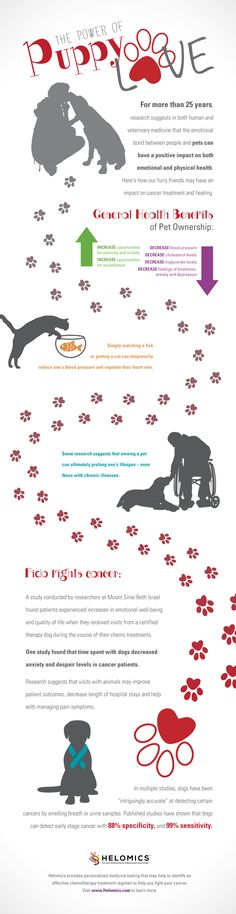Who doesn't love sloppy kisses, wagging tails and a soft purrrrr? But did you know that your pet may actually improve your health? Learn more in this #infographic about the health benefits of pets and the role they can play in cancer care. #NationalPetMonth