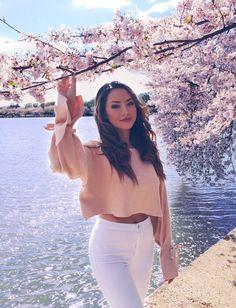 Washington D.C Cherry Blossoms - Hapa Time