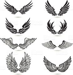 Wings Illustration royalty-free stock vector art