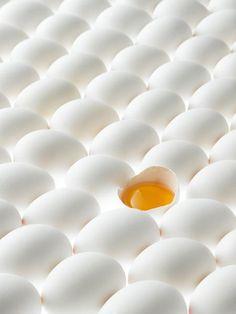 Kunstwerk: 'Witte eieren, waarvan er eentje open is' van Beeldig Beeld