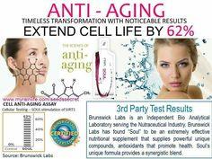 Myrainlife.com/stephaniejoy Mascarilla Anti Acne, Rain International, Health Tips, Health And Wellness, Antioxidant Supplements, Health Vitamins, I Am Amazing, Organic Seeds, Feel Better
