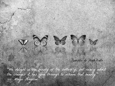 Butterflies - Maya Angelou