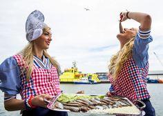 Haring , Hollandse nieuwe maatjes