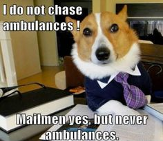 Well, what would you do with an ambulance anyway?