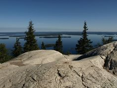 See 9 photos and 2 tips from 264 visitors to Kolin luontokeskus Ukko. Worth visiting before going to the trails of Koli. Viria, The Great Outdoors, Wonders Of The World, Beautiful Places, National Parks, Scenery, Landscape, Nature, Travelling