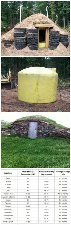 8 DIY Root Cellar Ideas for Natural Storage of Fruits and Vegetables
