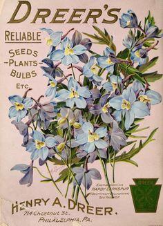Dreer's garden book : 1906