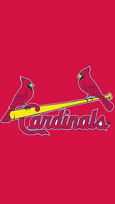 St. Louis Cardinals 1998jr