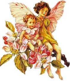 Blossom Fairies, Cecily Barker.