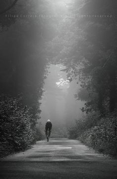 Early morning, my kind of cycling. I love being out in an early morning mist and riding sun. Cycling Art, Road Cycling, Cycling Bikes, Cycling Jerseys, Bmx, Cycling Motivation, Motivation Wall, Fitness Motivation, Bicycle Art