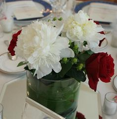 Beautiful Red and White Peonies in a cylinder vase make a lovely peony wedding centerpiece. Peonies Wedding Centerpieces, Wedding Bouquets, Wedding Flowers, Red Rose Wedding, Wedding Colors, Massachusetts Wedding Venues, Rose Vase, White Peonies, Red Roses