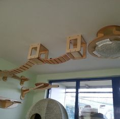 Cat jungle gym Awesome ANIMALS all of our kitties Pinterest