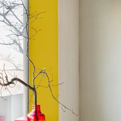Des ébrasements de fenêtres éclairés par du jaune