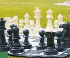Garden Chess game (can be rented from party rental store)