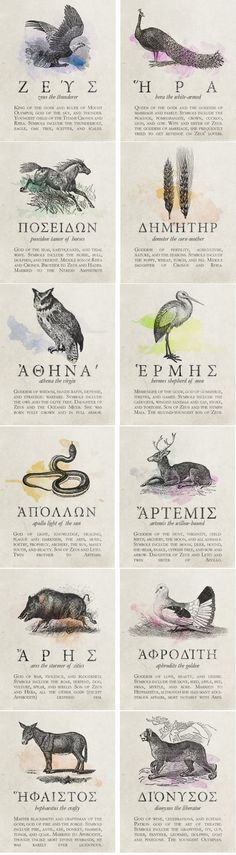 2 466 points 104 comments favorite animals of famous greek gods 9gag has