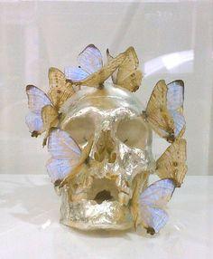 skull art | Tumblr