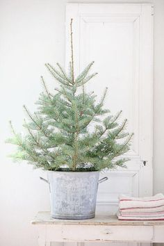Dreamy Whites: French Farmhouse Christmas Items in the Shop, Wintersteen Farms Wreaths, and a Container Sale Christmas Tree Diy After Christmas, Noel Christmas, Christmas Items, Little Christmas, Country Christmas, White Christmas, Natural Christmas, Minimal Christmas, Beautiful Christmas