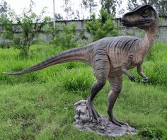 """Allosaurus Dinosaur Life-size Statue ► P̲r̲i̲c̲e̲: $2,399.00 , To Buy Click Above Images▲ - Made of resin Dimensions: W: 112"""" x D: 31"""" x H: 74"""" Weight: 125 lbs    #egyptian #Sculptures #ancientgallery"""