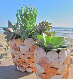❤ Kagylós kaspók - tengerparti hangulatú virágcserepek ❤Mindy -  kreatív ötletek és dekorációk minden napra