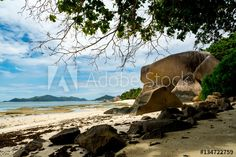 Natural coral reef in front of a tropical paradise beach with white sand and big rocks, Anse Source D'Argent, La Digue, Seychelles