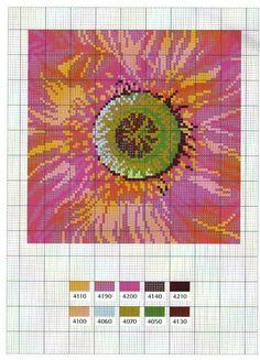 Gallery.ru / Фото #33 - Flower Variations - Mongia